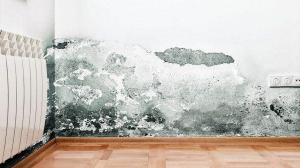 Distinzione fra perdite d'acqua chiare e acque scure